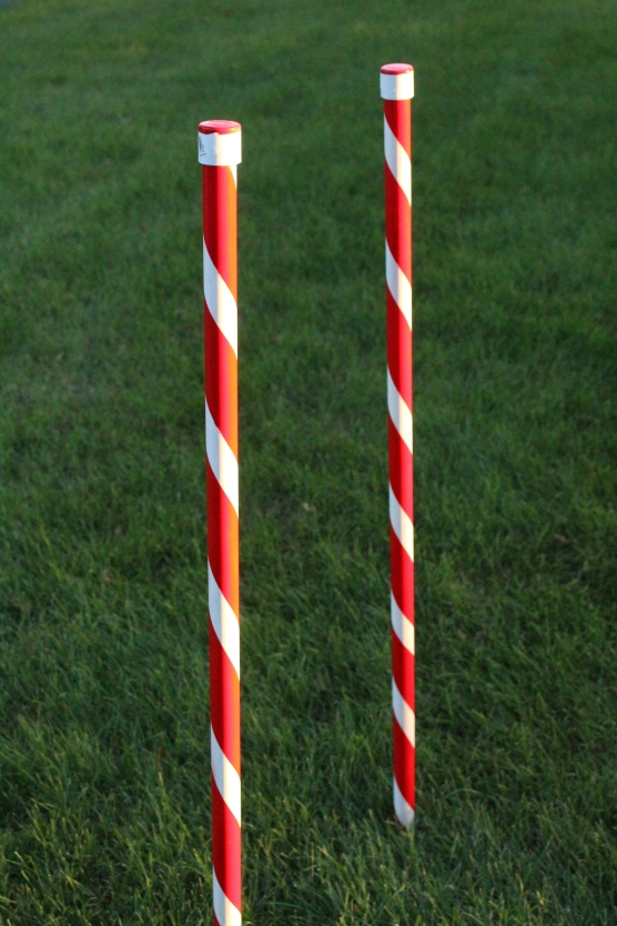 weave-poles-finished-015