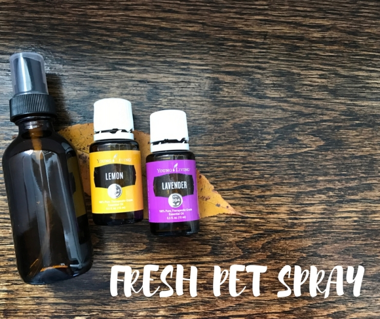 Young Living Lavender and Lemon Fresh Pet Spray to help your pets smell clean all day.