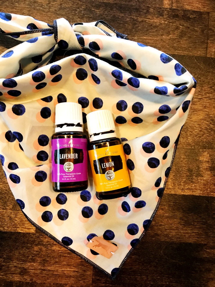 Lavender and Lemon Young Living essential oils being used for a fresh pet dog spray to eliminate dog odors.
