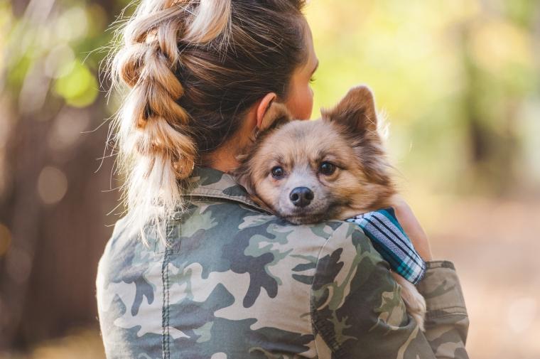 Pomeranian dog gives hugs to his mom.