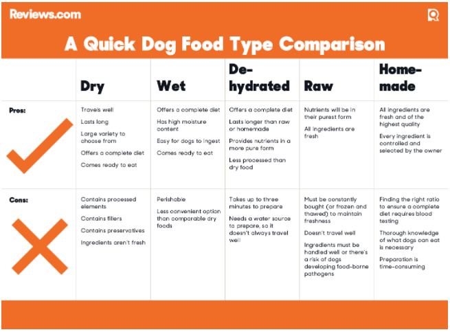 Pros and Cons to dog food types.